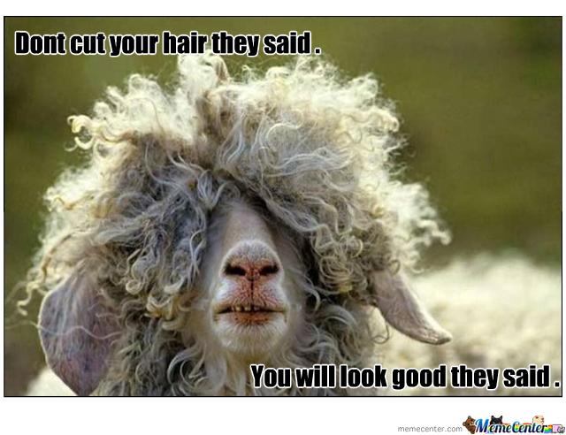hair-cut_o_223050